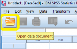 IBM Open data document