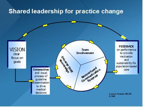Shared Leadership for Practice Change