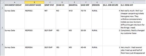 Figure 4.4.2 – Survey Data spreadsheet prepared for import to MAXQDA11