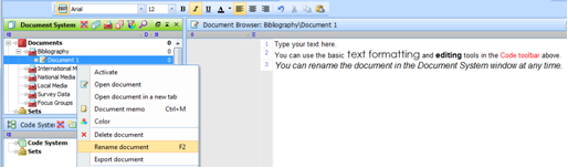 Figure 5.5.3 – Renaming a text document