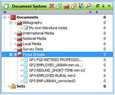 Figure 5.8.2 – Document System window after importing focus group files