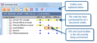 Figure 10.2.2 – Thematic Grid element of Summary Grid window