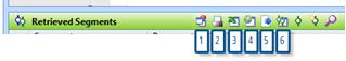 Figure 8.2.1 – Retrieved Segments window toolbar